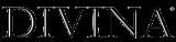 Divina-Logo-Type Black.png