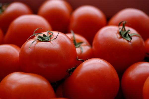 TomatoesFORWEB.jpg