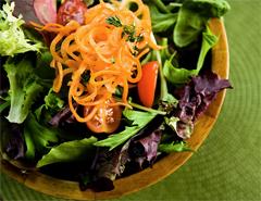 Saladca.jpg